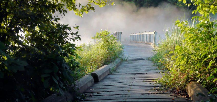 ¿Qué es un terapeuta holístico?