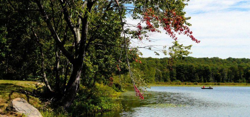 Día del Psicólogo 13 de Octubre – Mi manifiesto
